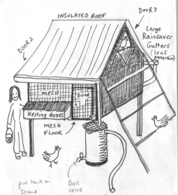 chickencoop2
