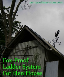 fox_proof_ladder_and_weather_vane