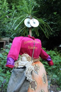 scarecrow uses old clothes and cds for eyes to scare the birds