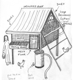 chicken mansion design- Permaculture Visions