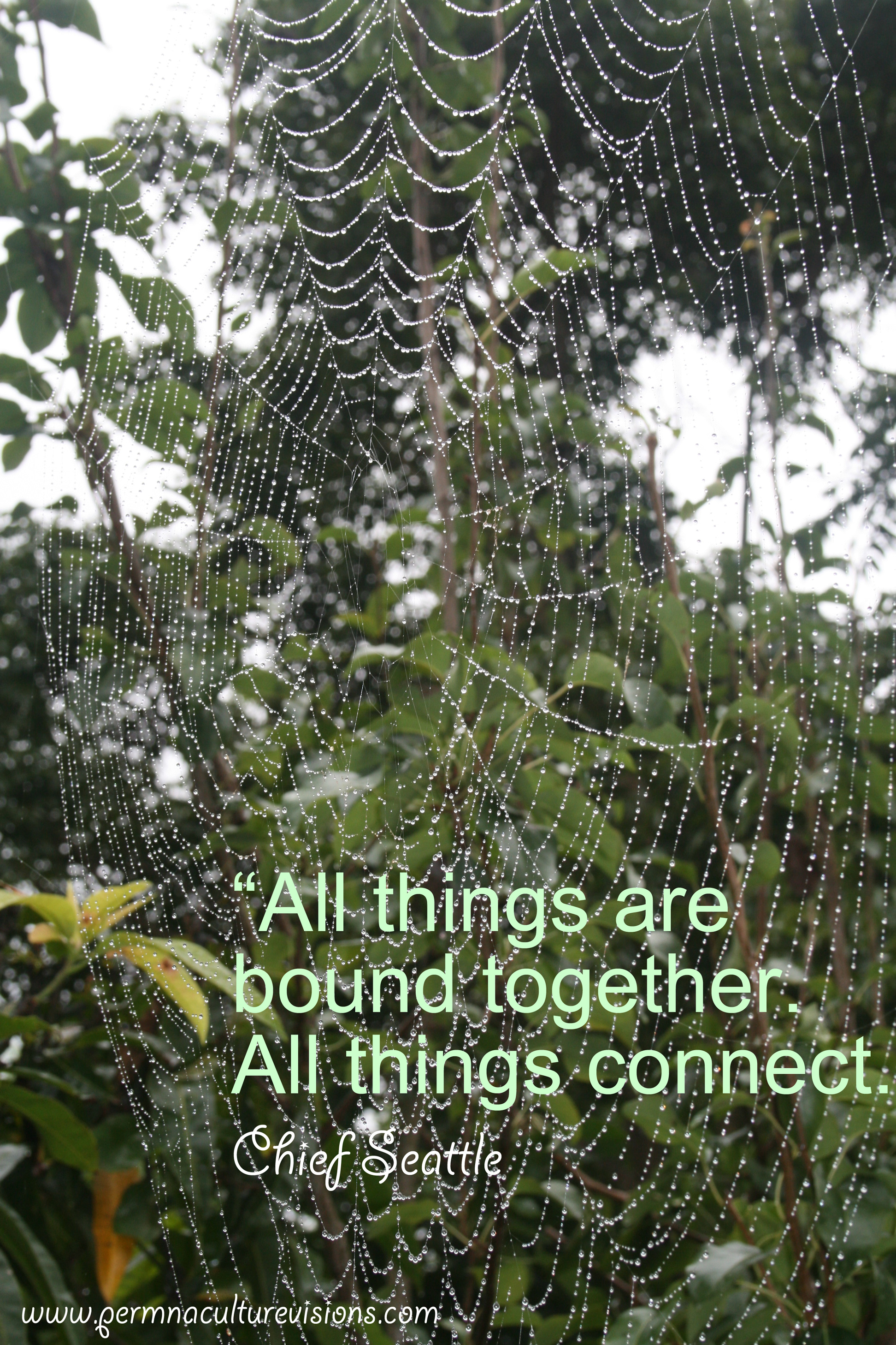 all_things_connect