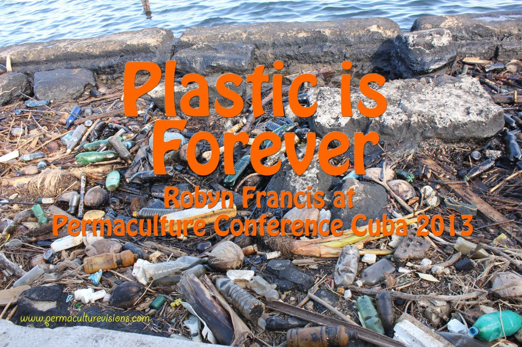 Plastic-is-Forever