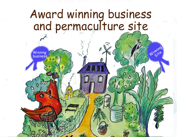 our award winning Permaculture business and site