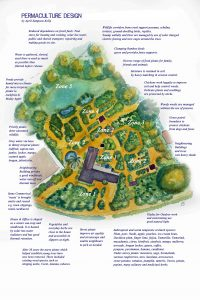 Our Permaculture Design and Demonstration Site.