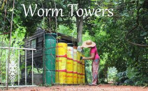 worm towers