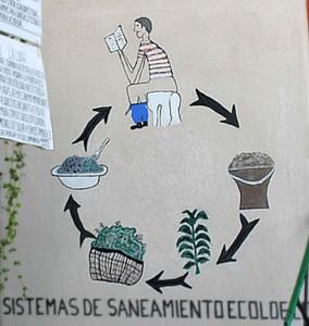 compost_poop