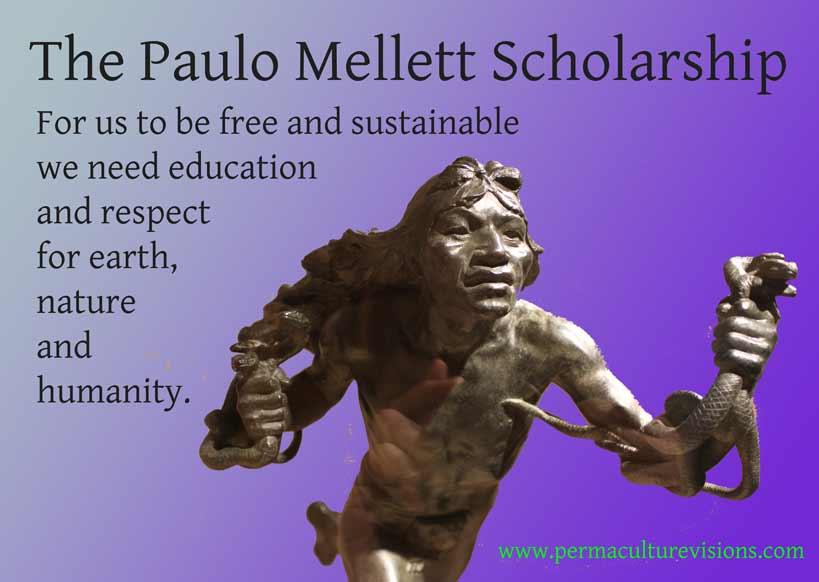 paulo mellett scholarship