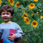 ryan sunflowers2