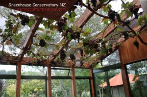 nz-greenhouse