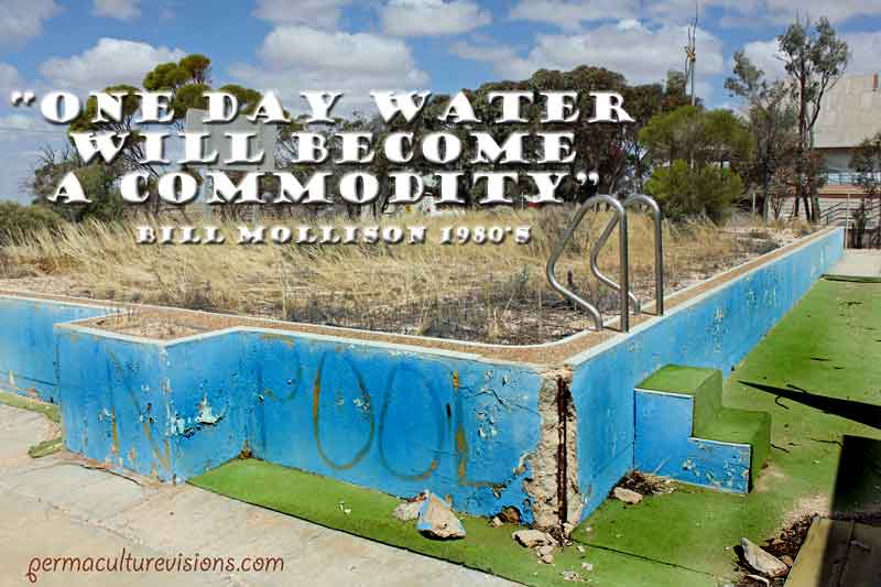 cook-pool-dry-and-abandoned