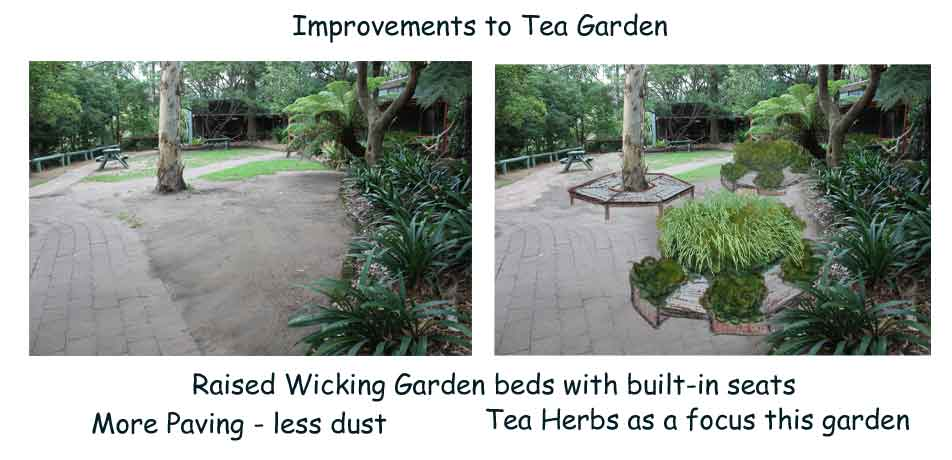 before and after improvements tea garden permaculture design