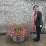 shaoying from shaoyingtours.com