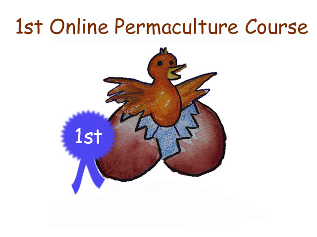 online permaculture training