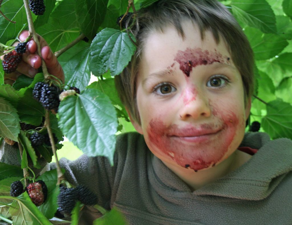 Tom, a wide-eyed boy, paints his face with mulberry juice