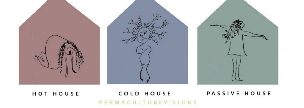 hot, cold or passive house - which house is yours?