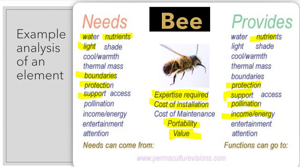 analyse components such as bees as part of the process